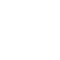 The Serve Team 250